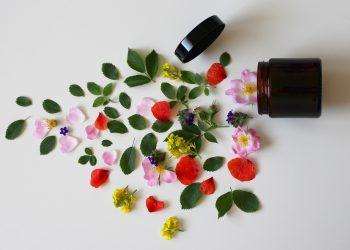 natural-cosmetics-3397277_1280